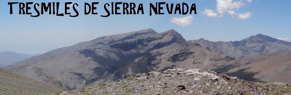 3000's DE SIERRA NEVADA