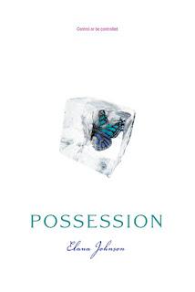 Possession by Elana Johnson