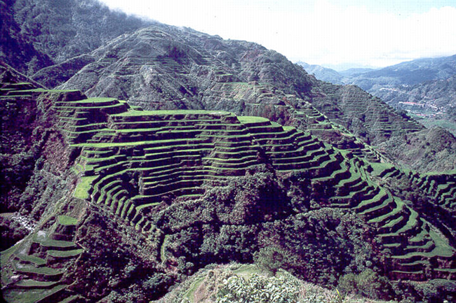 Welcome sa pinas the banaue rice terraces for Terrace farming meaning