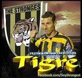 Escobar del tigre