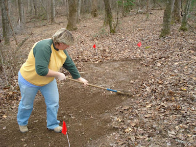 replacing leaves on wild-simulated ginseng planted area