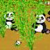 panda vahşi çiftlik-oyun