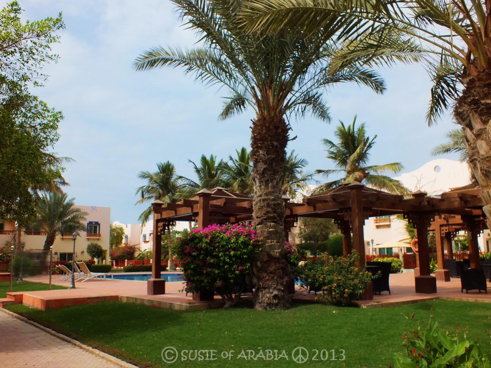 Aramco Compound in Saudi Arabia