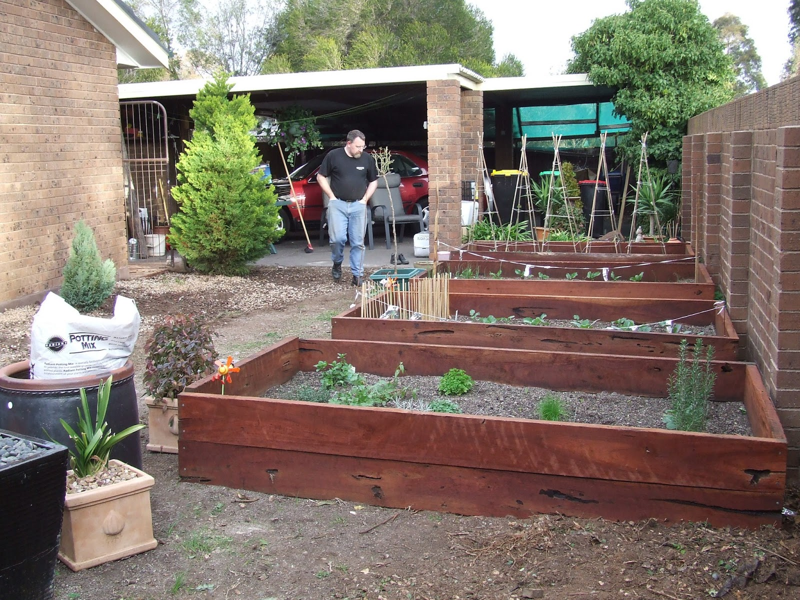 How To Make Raised Garden Beds For Vegetables The Greening of Gavin