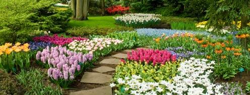 Incroyable NJ Flower U0026 Garden Show