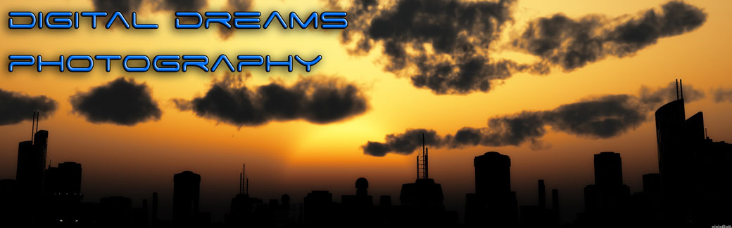 Digital Dreams Photography