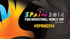 Mundial de Basket 2014
