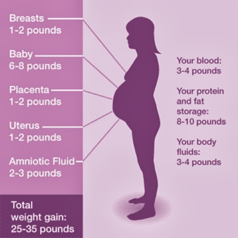 Diary of a Fit Mommy: Why Pregnant Women SHOULD Worry ...