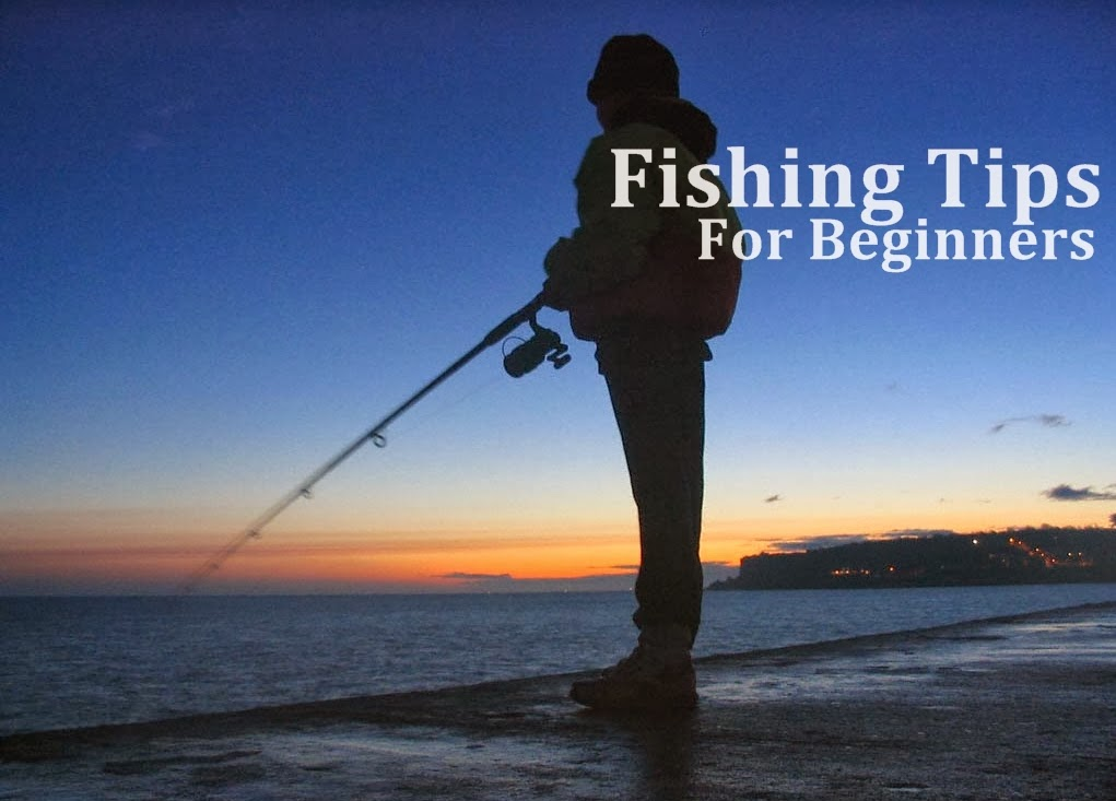 Top 10 fishing tips for beginners bigtacklebox for Fishing for beginners
