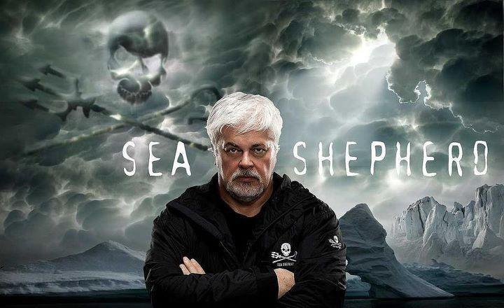 SUPPORT SEA SHEPHERD