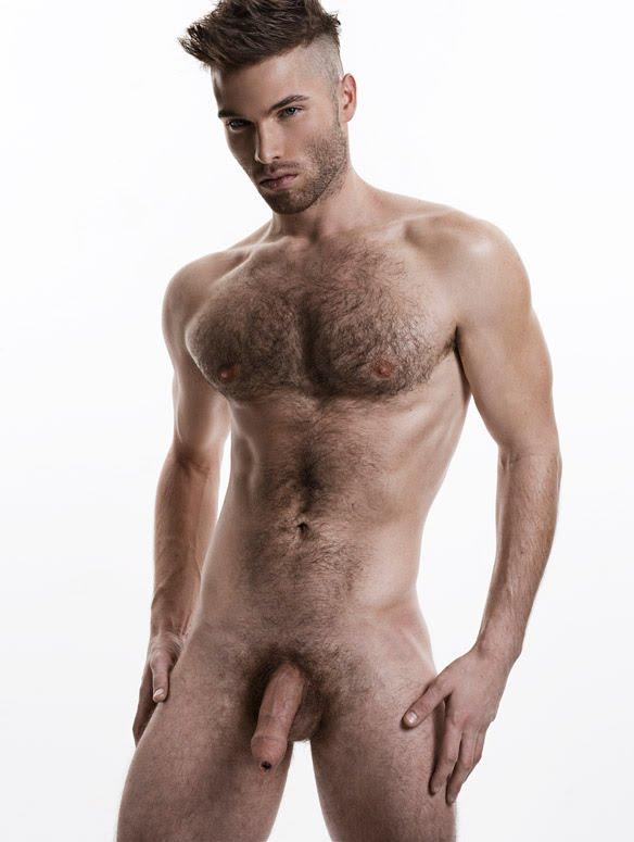 http://3.bp.blogspot.com/-xN_ZKHGnxBk/T5kfBJmT_nI/AAAAAAABrOc/bcMOPasXK0o/s1600/Hairy2.jpg
