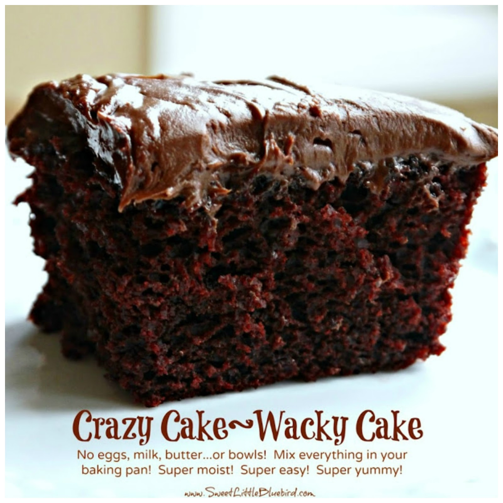 Chocolate Crazy Cake No Eggs Milk Butter or Bowls Sweet Little