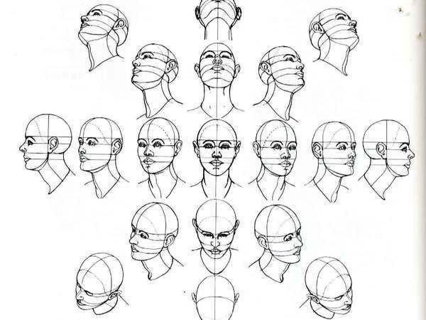 как рисовать голову в повороте
