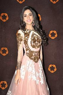 Kanika Kapoor in Lovely Desginer Anarkali Dress Floor Length at Tippu audio Launch Event