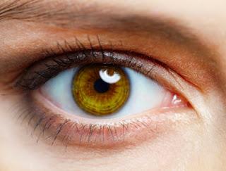 Kontakti me sy na bën më të vetëdijshëm për trupin tonë