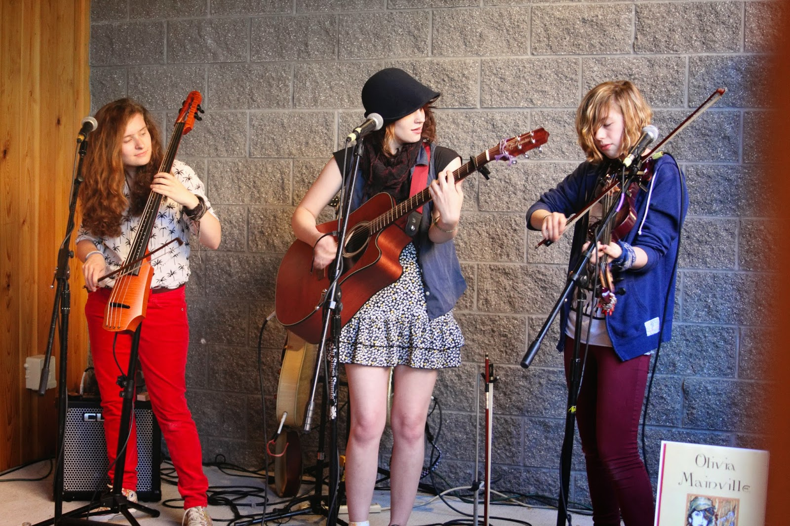 live music, the addicentals, frankfort, string band