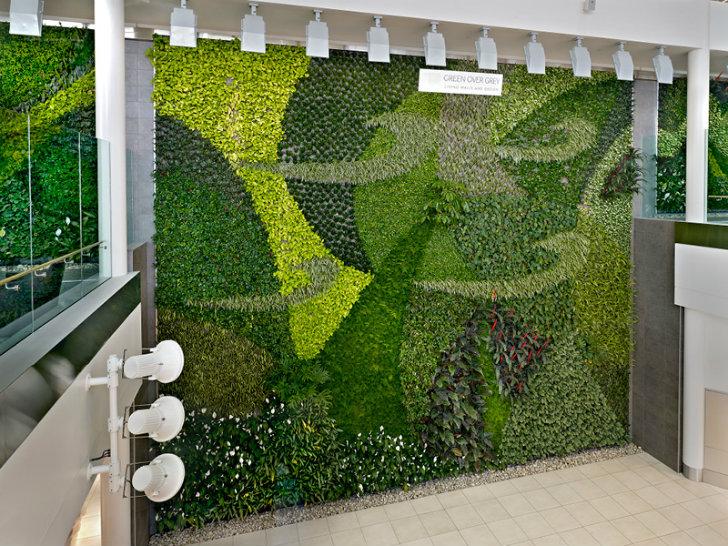 Blog un muro verde para el aeropuerto for Muros verdes naturales