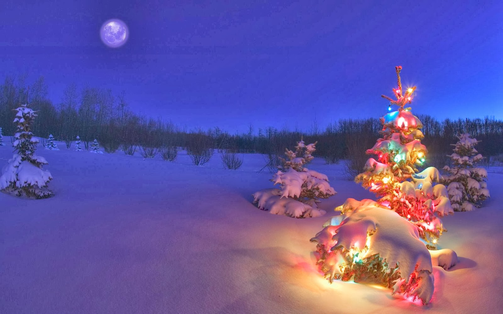 ♥★One day... PARADISE ★♥ - Página 39 Postales-navide%C3%B1as-con-arbolitos-o-pinitos-de-Navidad-Christmas-tree-+%289%29