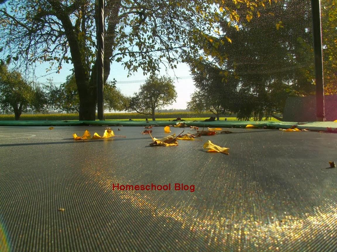 Herbst, Autumn, Homeschool Blog, Bernice und Jan Zieba