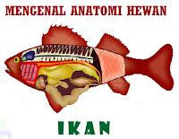 e-Learning Anatomi Binatang Yang Hidup Di Air Ikan