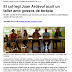 Notícies: El col·legi Joan Ardèvol de Cambrils acull un taller amb gossos de teràpia