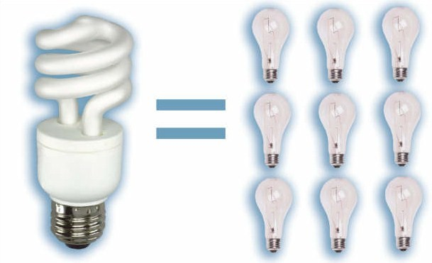Jenny 39 s place Efficient light bulbs