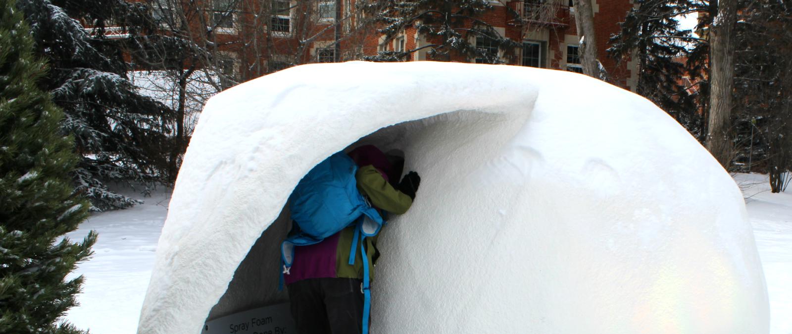 A Peak Inside a Snow Globe