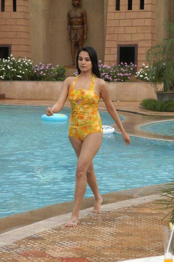 Hot Anita Hassanandani Bikini Pics - SEXY TV Celebrity Pictures - Famous Celebrity Picture