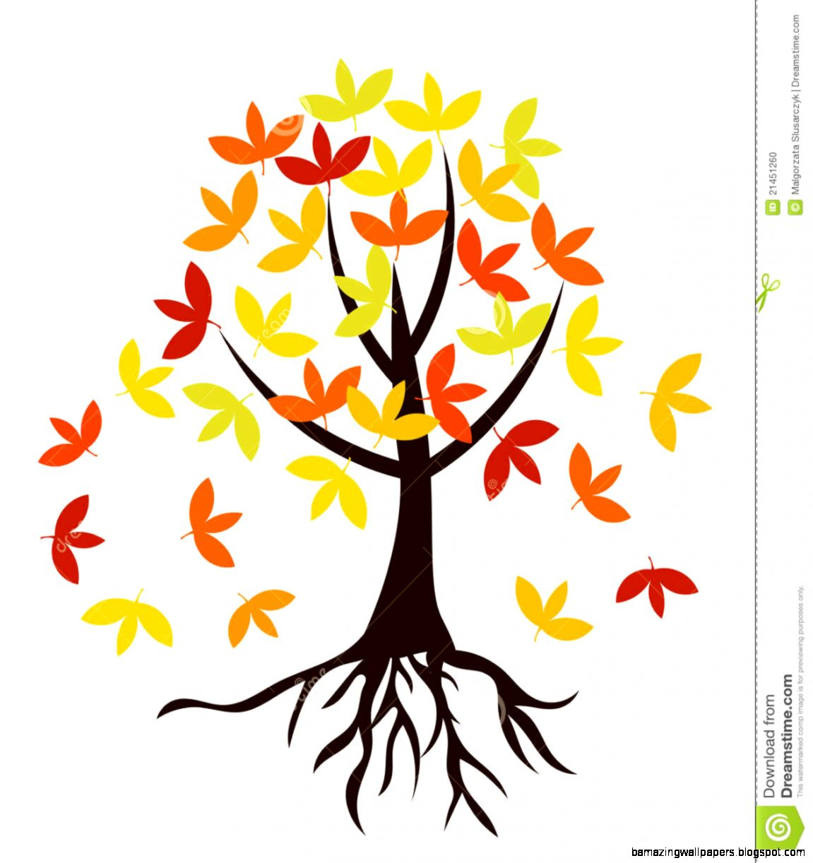 Roots Of A Tree In Fall Colors Royalty Free Stock Photo   Image