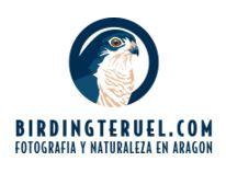 BirdingTeruel