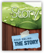 The_Story