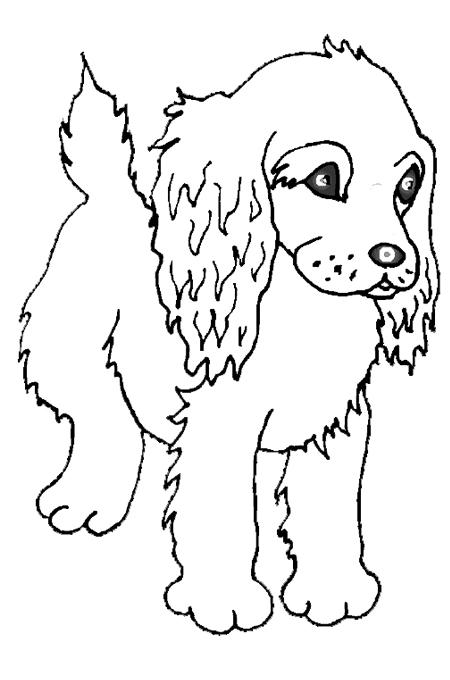 جواب بازی حدس بزن کدوم بازیگر صور كلب للتلوين