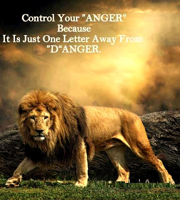 The Best Anger Quotes and Sayings