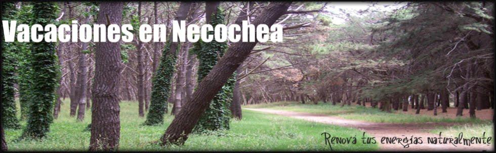 Alquiler Temporario Necochea - Casas Propias