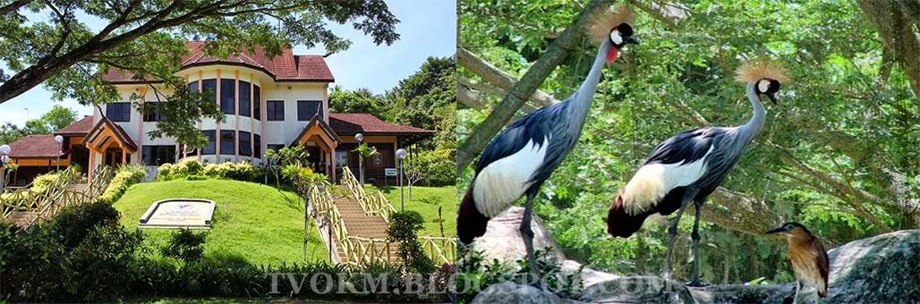 BIRD PARK LABUAN