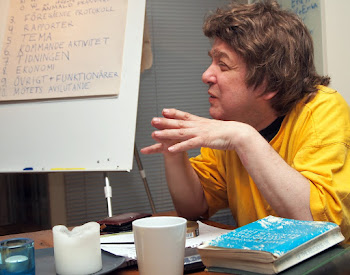 På möte 2012.
