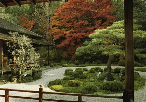 Green garden - Feng shui en la casa ...