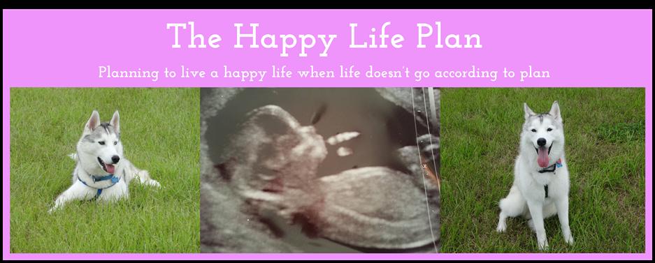 The Happy Life Plan