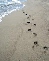 le bien-être pour les pieds