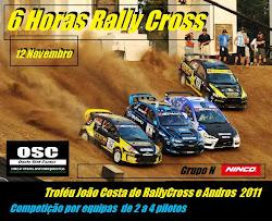 6 Horas RallyCross Ninco WRC 2011