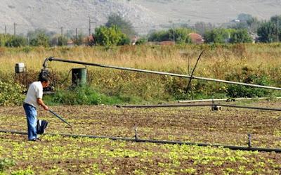 Επιστροφή ΦΠΑ στους αγρότες ειδικού καθεστώτος