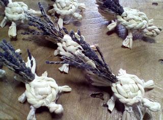 ミニ亀 シッポが古代米