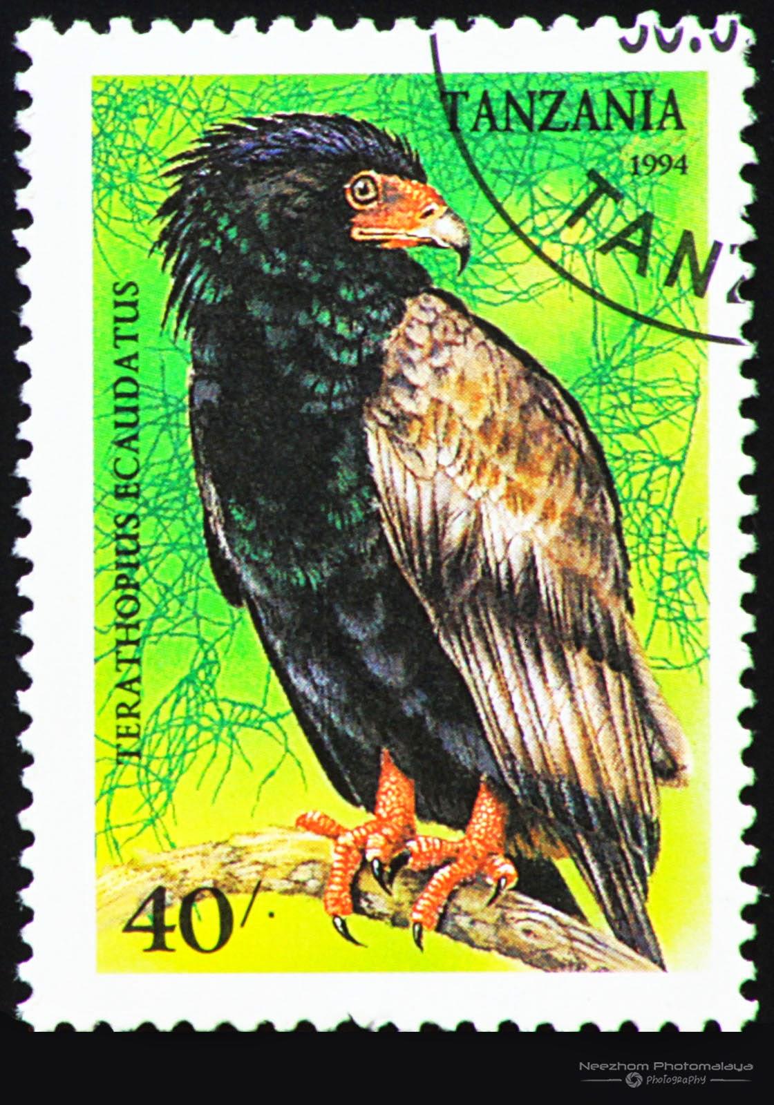 Tanzania 1994 Birds of Prey stamp - Bateleur (Terathopius Ecaudatus) 40 s