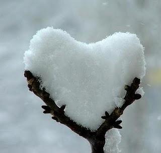 photos_winter_cold_0