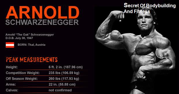 home Arnold Alois Schwarzenegger Size (Stats)