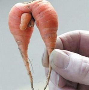 Zanahoria con pene