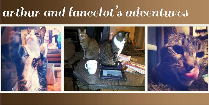 Arthur and Lancelot's Adventures