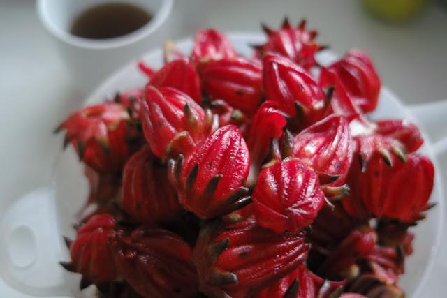 洛神花茶(芙蓉花茶,Hibiscus Tea)