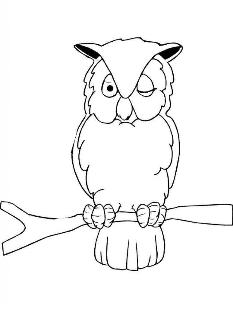 Owl coloring page bird 10 image for Printable owl coloring pages