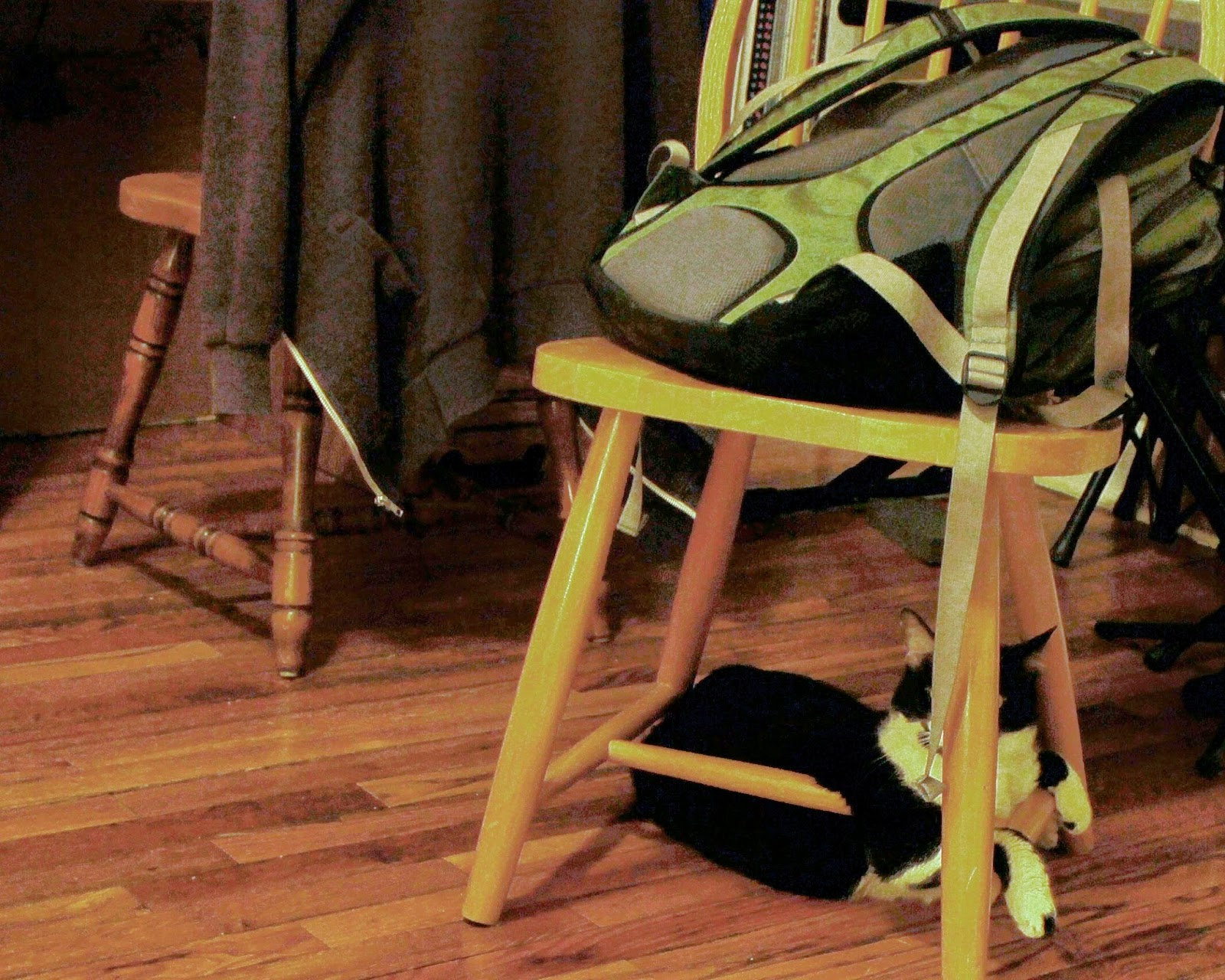 uncomfortable chair. Contemporary Uncomfortable Taco Tuesday  Uncomfortable Chair To Uncomfortable Chair